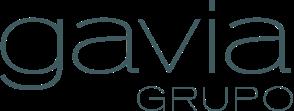 grupo-gavia
